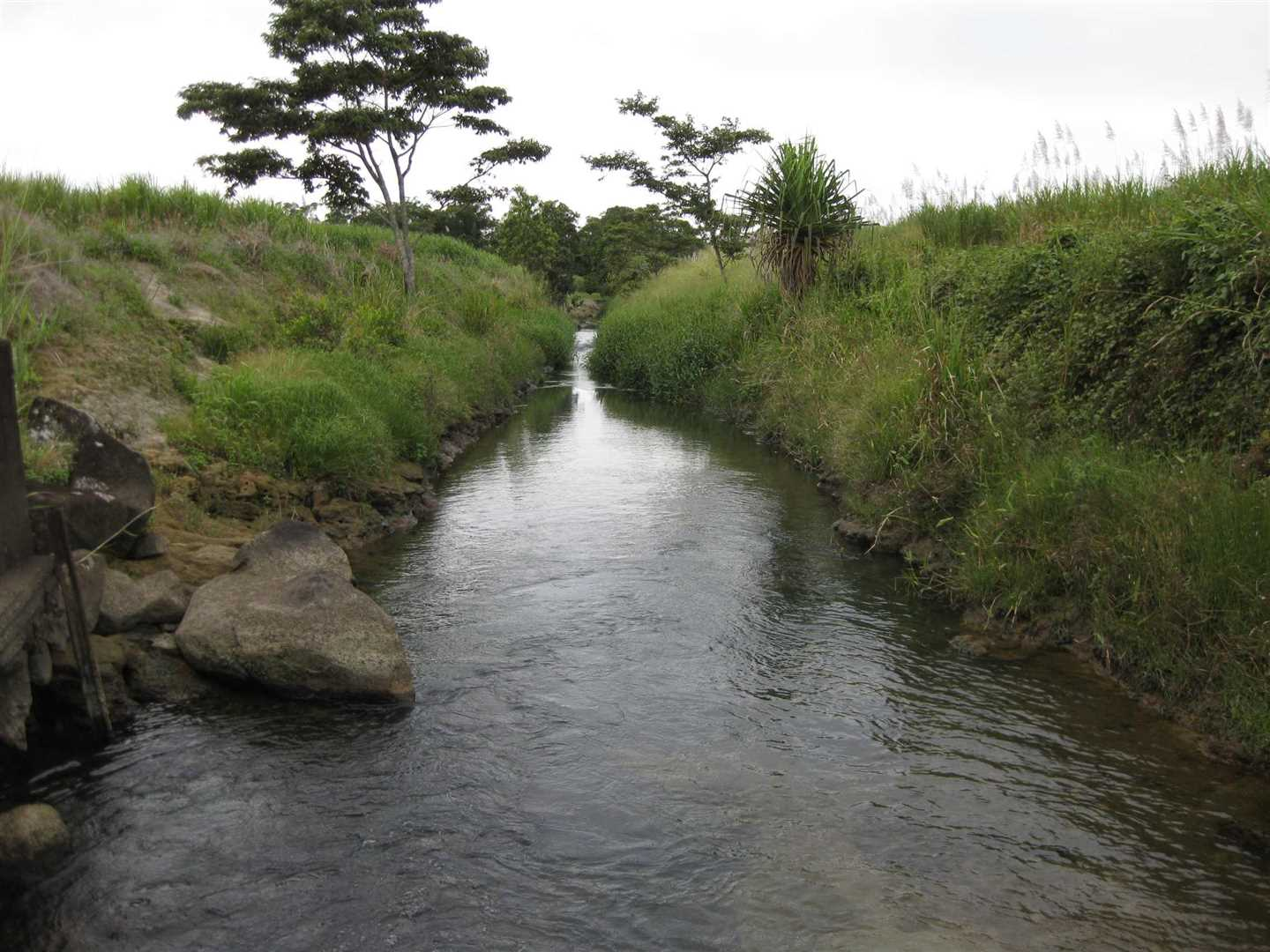 View of part of main internal creek in the property, photo 1