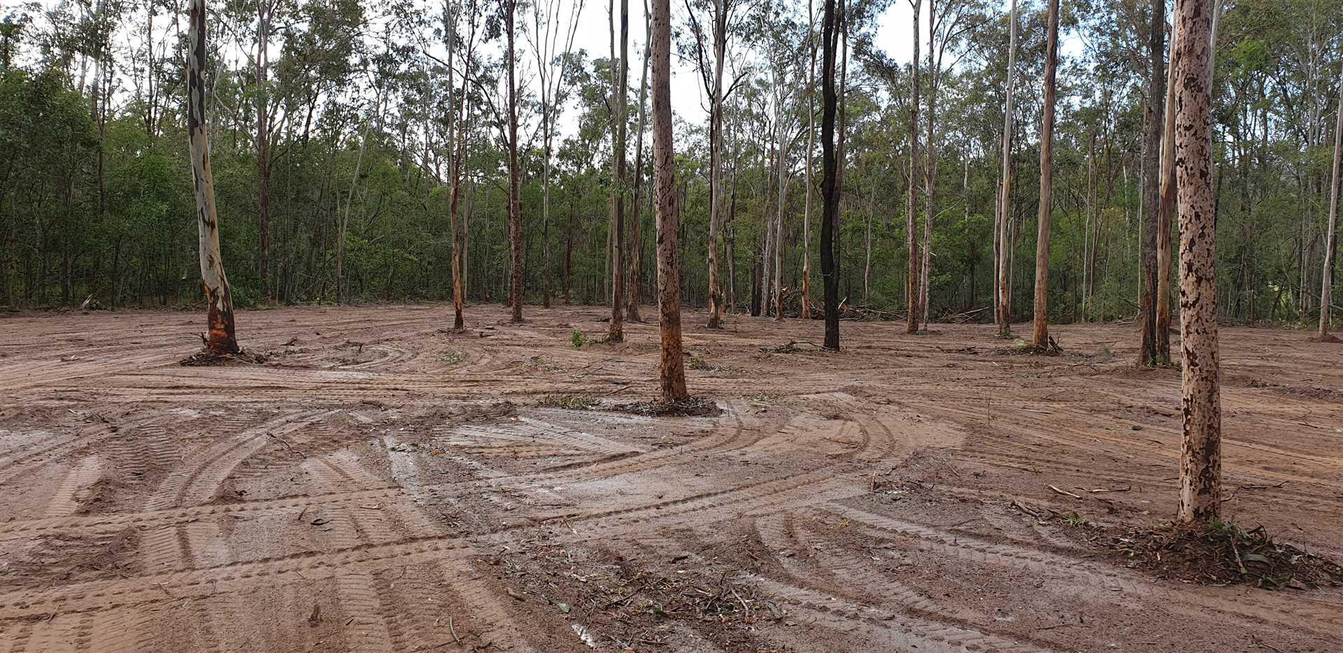Magnificent 10 Acres Close To Jimboomba Township