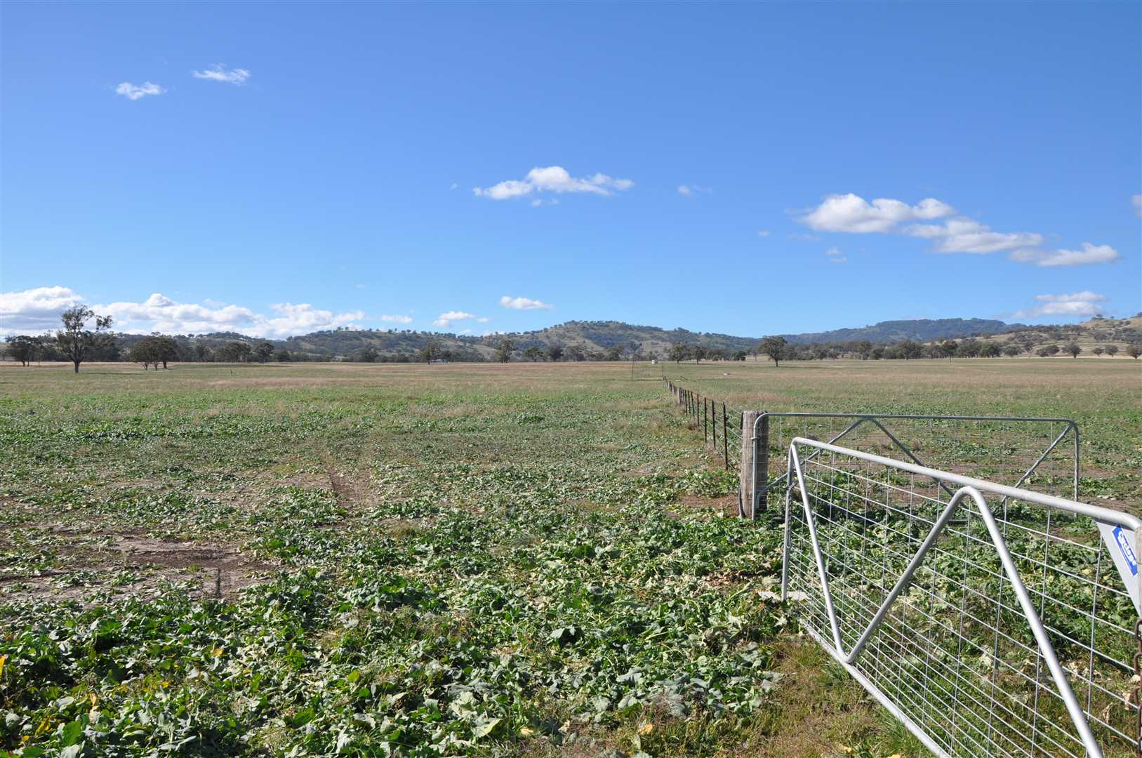 210 acre rural lifestyle block, ready to build on