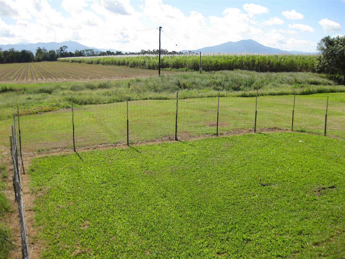 View from part of high-set home back verandah showing part of property. Fence shown excluded, property of the tenant