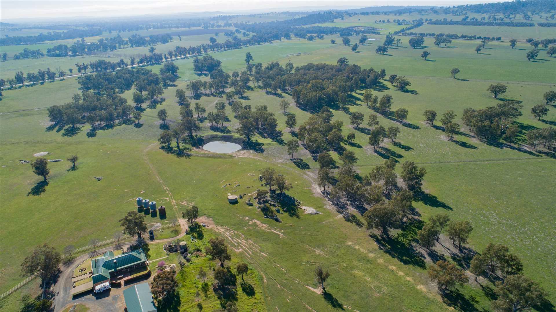 Wagga Grazing & Farming Lifestyle