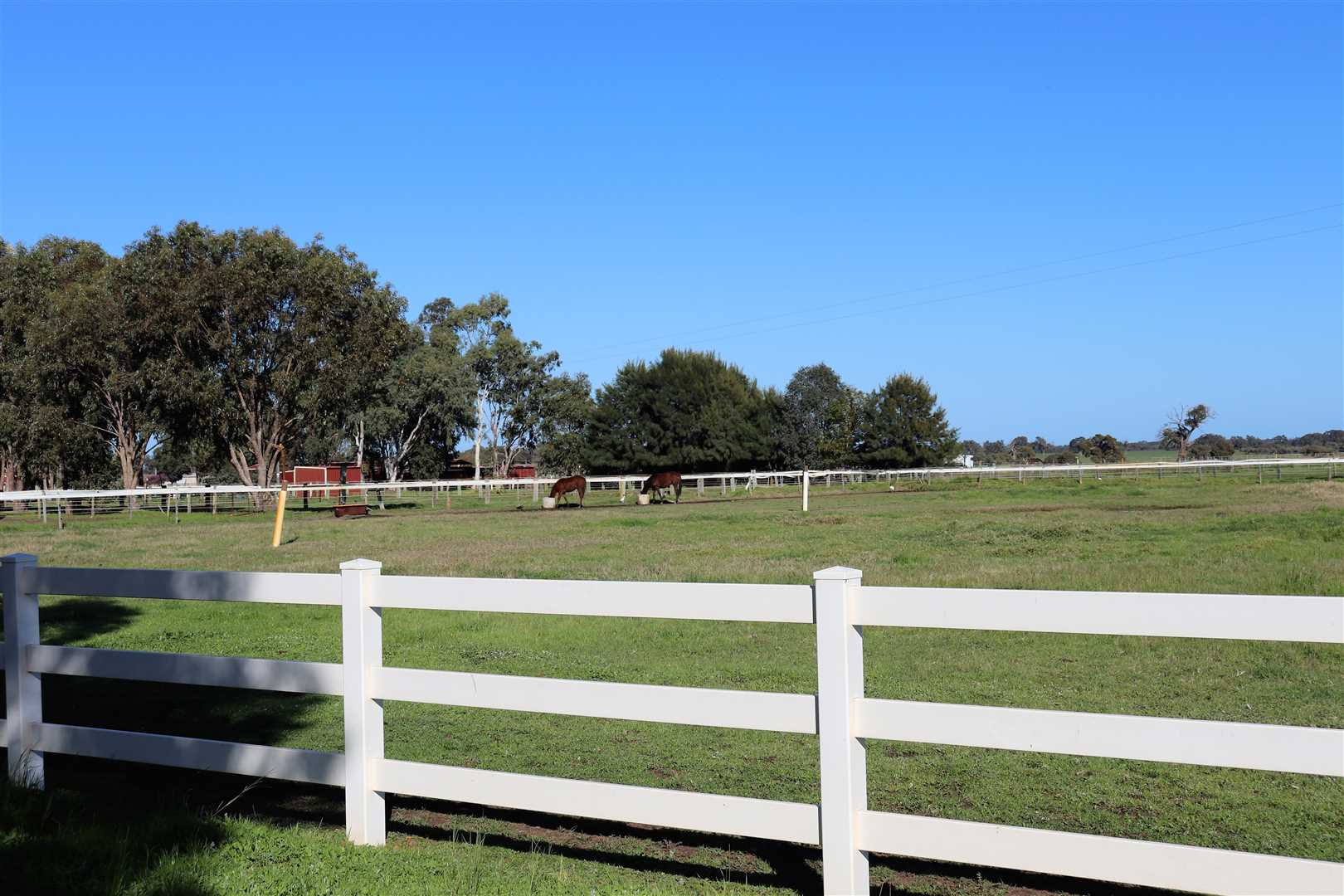 paddocks with post and rail fencing