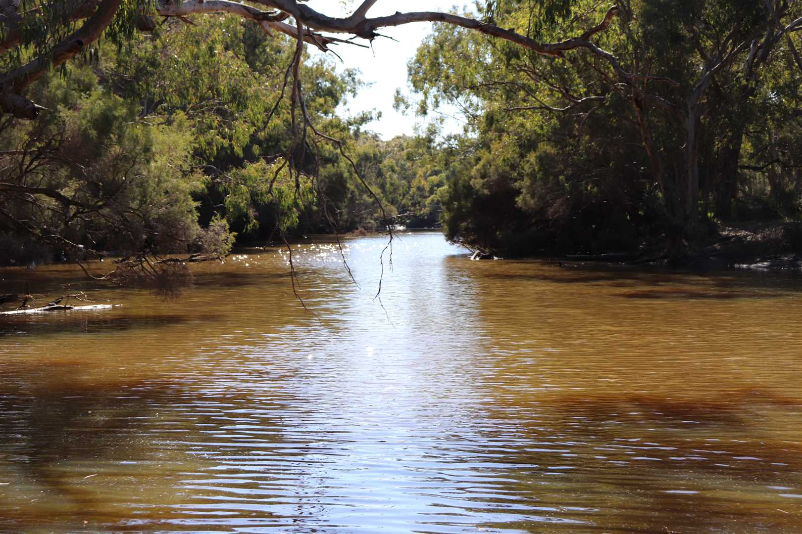 Moore River Aug 2019
