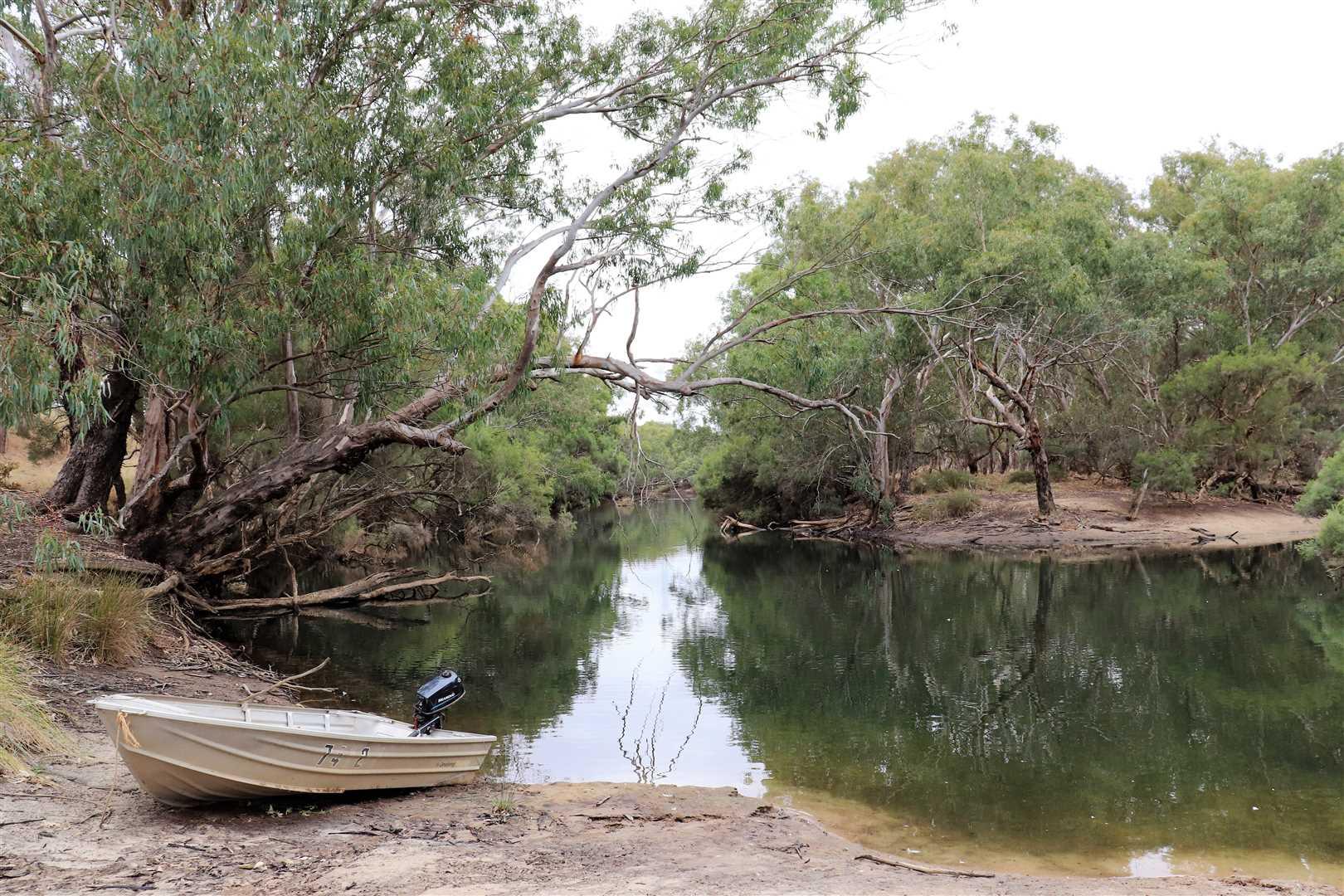 Kiri Park Pool camping area
