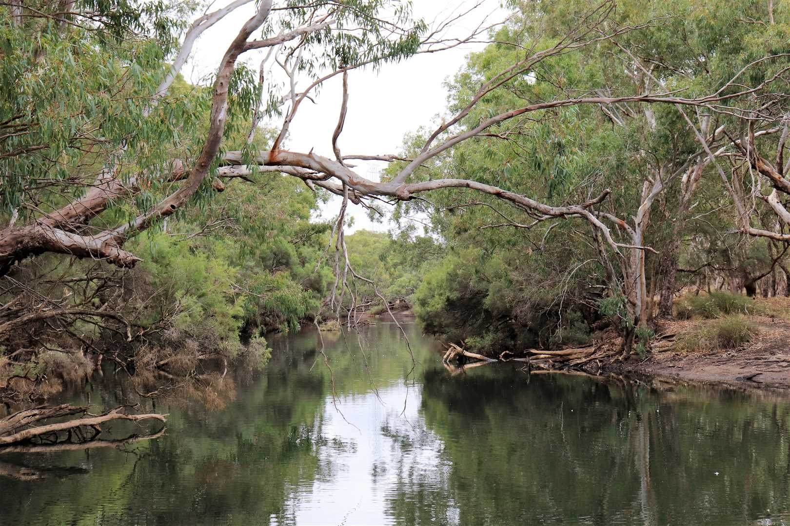 March 2019 - Moore River