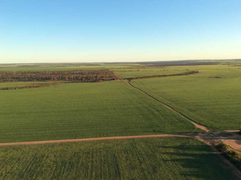 Tara Farm       (1,216 ha / 3,006 ac)