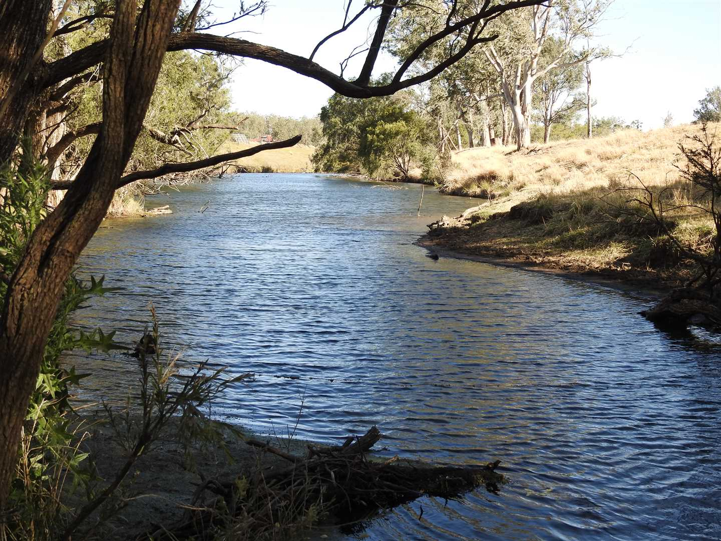 Permanent water in Barkers Creek with 2x12Ha licences