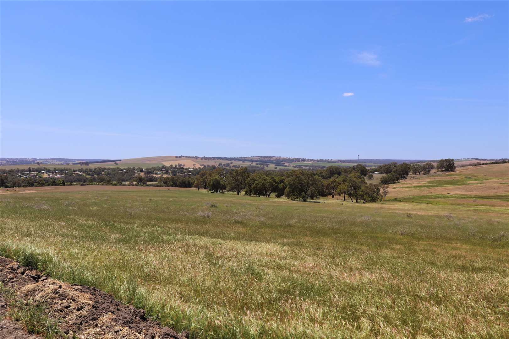 East view over Gingin