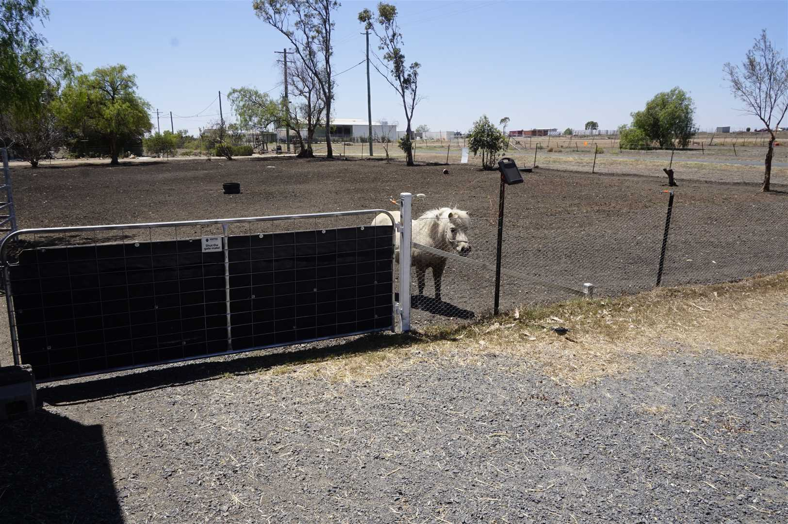 Fenced with Shelter