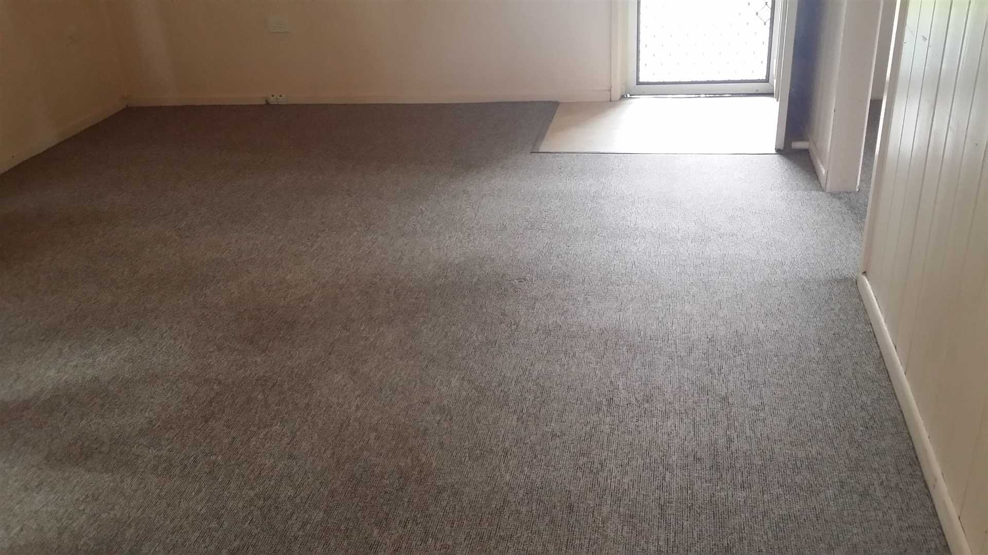 Carpeted Lounge