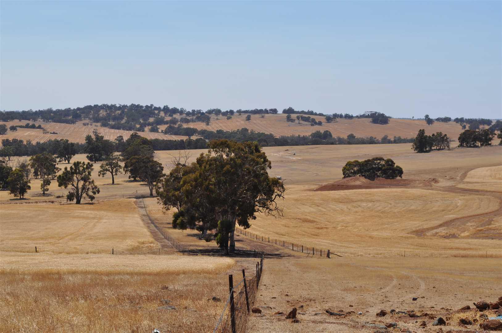 'Rhodesdale'  ( 320 ha / 791 ac )