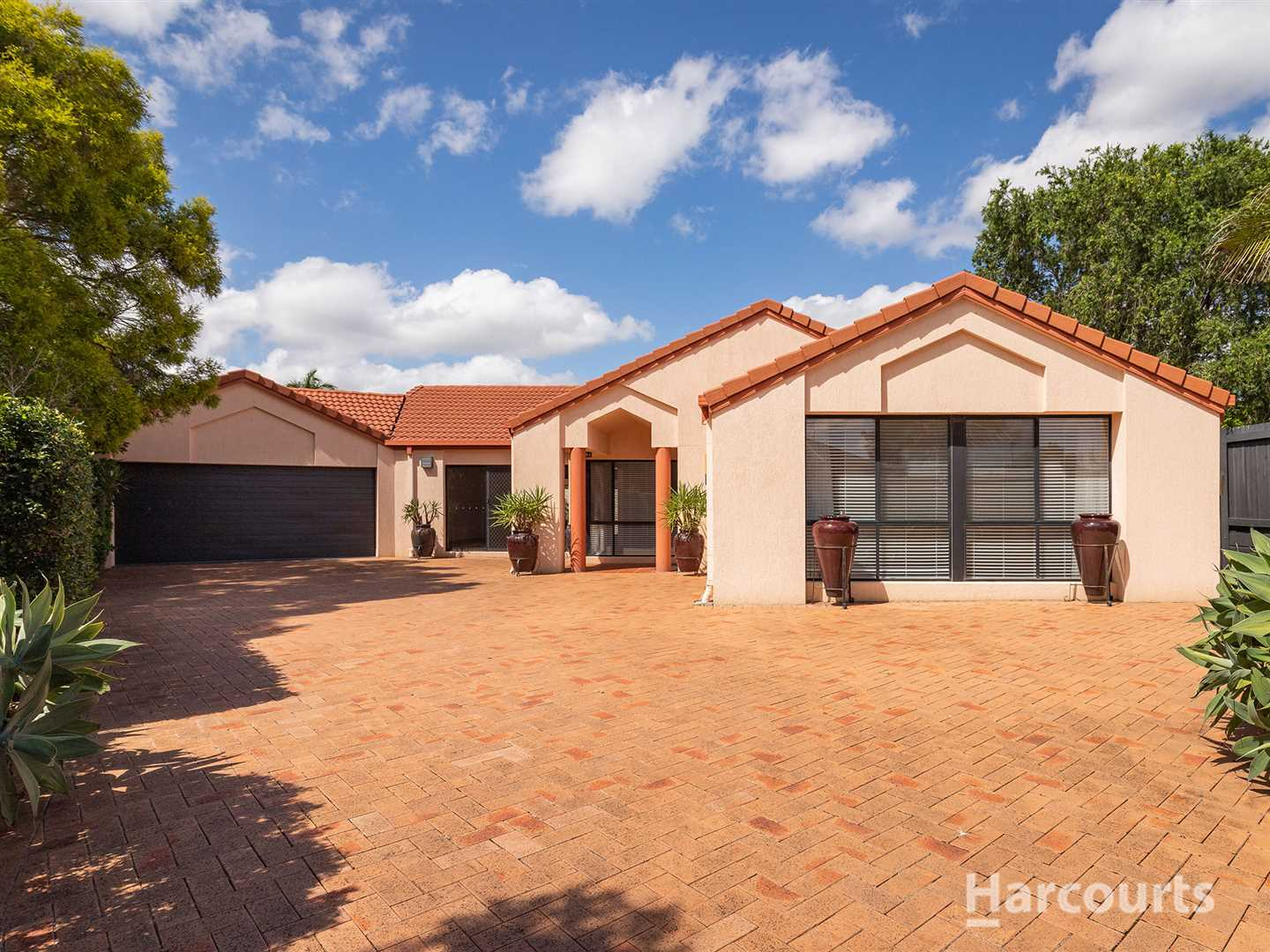 Outstanding Low set Home in Mansfield State & State High Cat